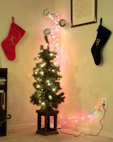 Christmas 2012 (2)